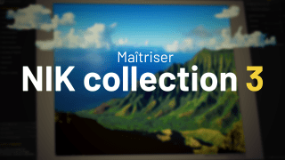 Maîtriser Nik Collection 3