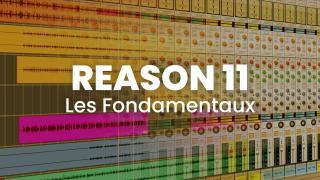 Reason 11 - Les fondamentaux